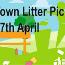 Litter Pick visual